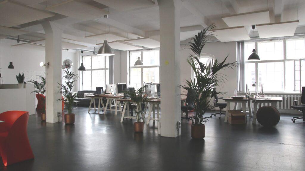 dizajnova-kancelaria-kvety-rastliny-lampy-stoly-stolicky-okna