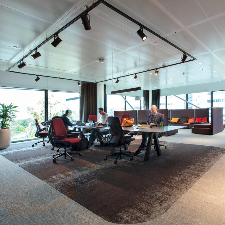 kancelaria-koberec-svetla-okna-rastliny-zamestnanci-stol-stolicky